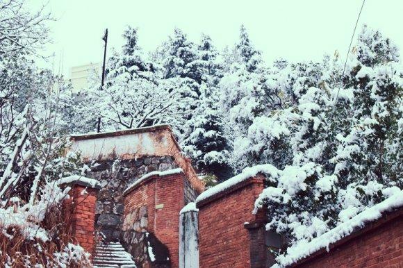 宣威这场雪一下就下了两年