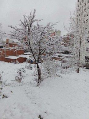 这场疫情能像宣威今天的降雪吗?