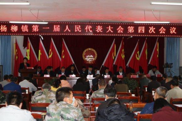 杨柳镇胜利召开第一届人民代表大会