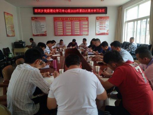 双河乡党委专题学习市域社会治理现