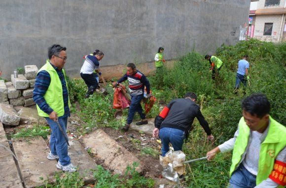 宛水街道柳林社区:开展爱国卫生运
