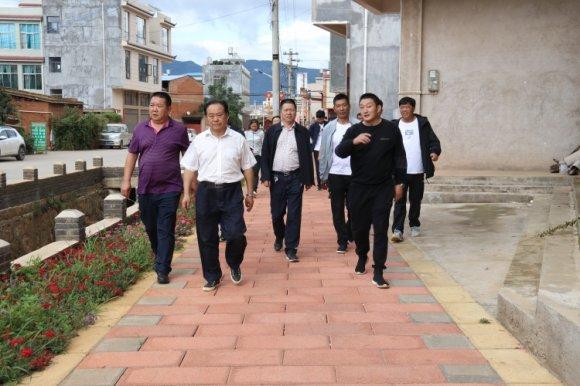 宣威市人大常委会执法检查组到板桥