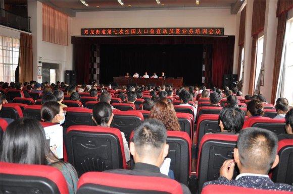 宣威双龙街道开展第七次全国人口普