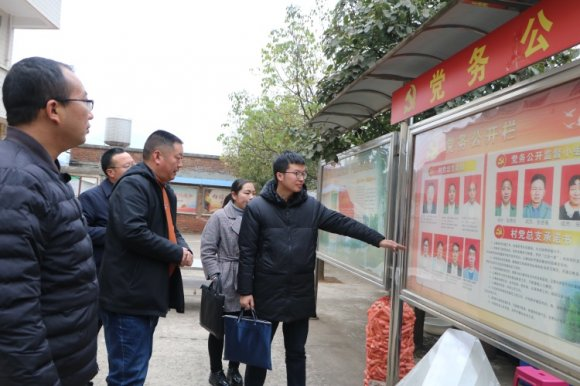 宣威市委组织部到杨柳镇开展基层党