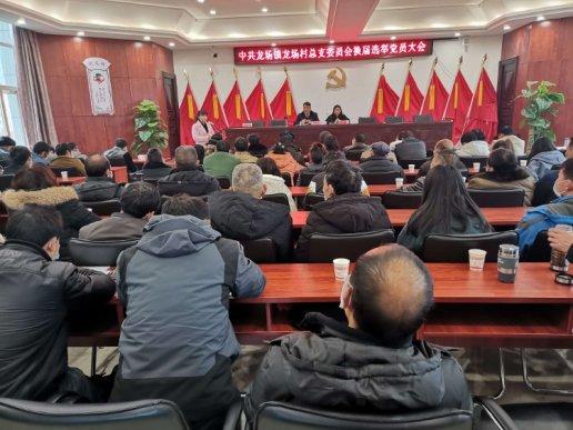 龙场镇圆满完成村级党组织换届选举