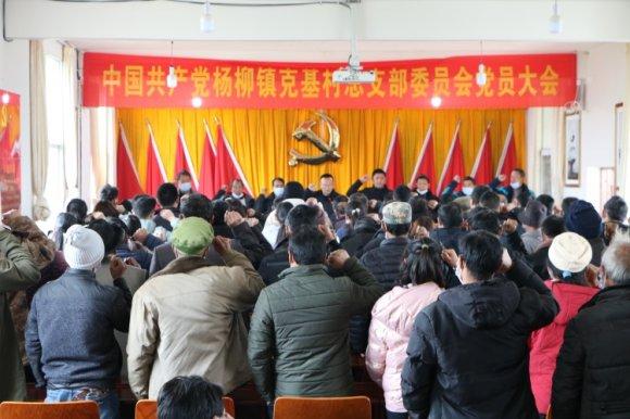 杨柳镇:圆满完成村党组织换届工作