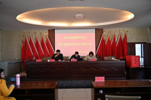 宛水街道柳林社区第六届居民委员会