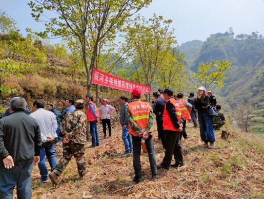 宣威双河乡:核桃提质增效技术培训