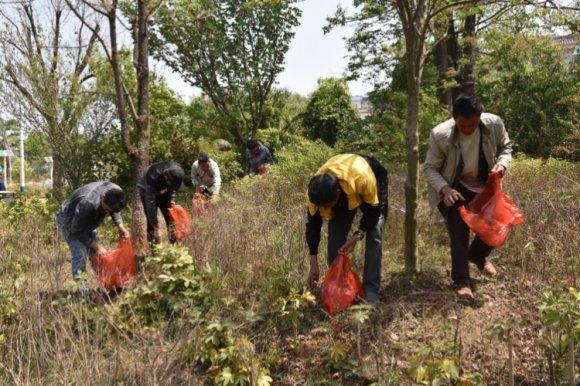 宣威热水镇组织社区矫正对象开展爱国卫生专项行动