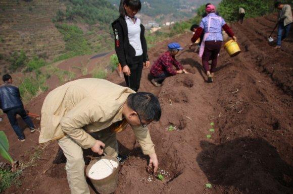 彝族村里的新鲜事
