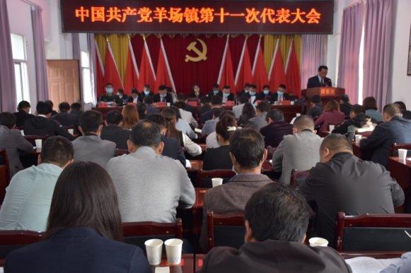 中国共产党宣威市羊场镇第十一次代