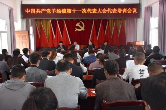 宣威市羊场镇:党代表培训提升代表