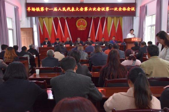 宣威市羊场镇第十一届人民代表大会