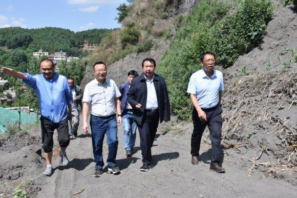 李勇到羊场镇调研生态环境保护工作
