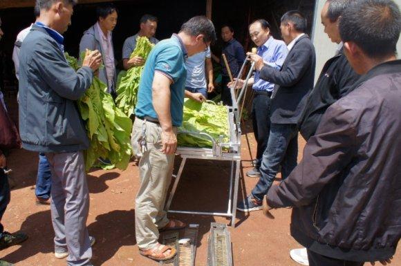宣威双河乡:开展烤烟烘烤技术培训