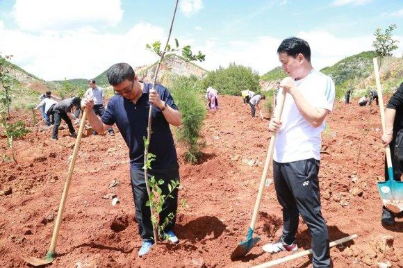宣威法院积极参加义务植树活动