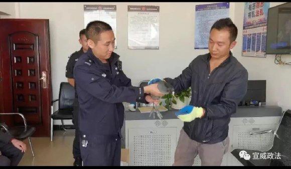 宣威警民携手救助国家二级保护动物