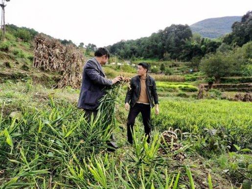 宣威市农村信用联社:当好农户脱贫