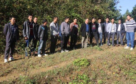 宣威阿都乡4300亩高标准农田建设项目