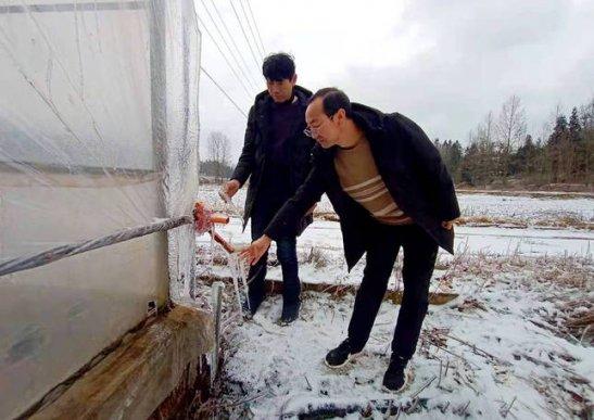 宣威宝山:加强农业设施检查 提高冰