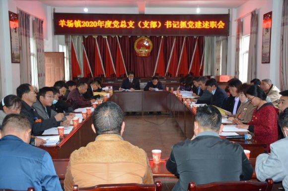 宣威市羊场镇召开2020年度党总支(支部)书记 抓党建
