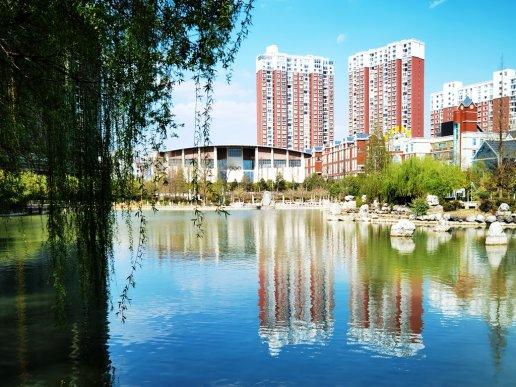 宣威市高标准推进国家卫生城市创建
