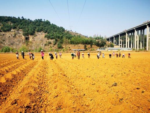 宣威宝山镇:劳务输出助农增收